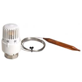 Термоголовка с погружным датчиком VR290 ViEiR